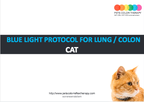 Cat blue reflex protocol lung colon