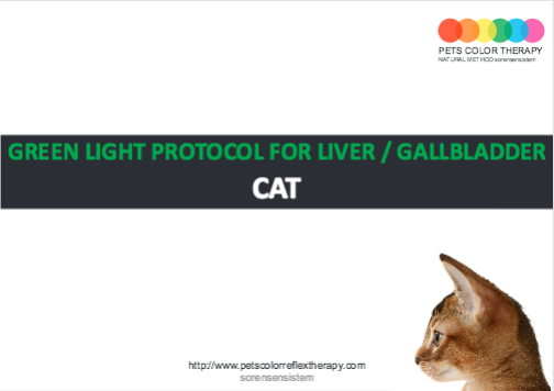 Cat green light protocol liver gallbladder