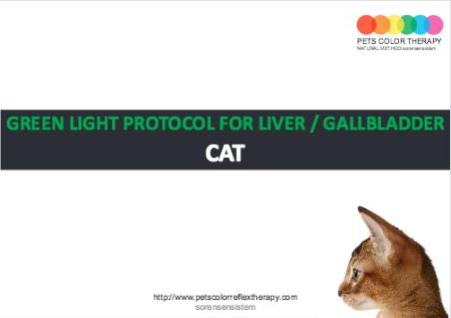 Cat green light protocol liver gallbladder