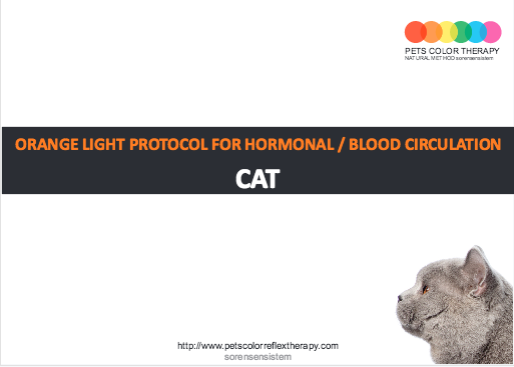 Cat orange light protocol hormonal