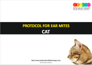cat color ear mites