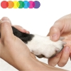 dog paw care tips