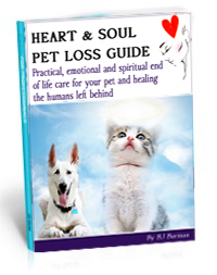 heartsoul_pet-loss_book