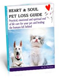 heartsoul_pet-loss_book
