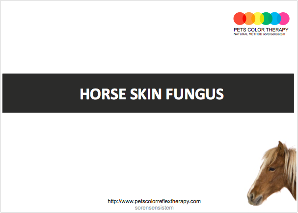 horse thrush treatment