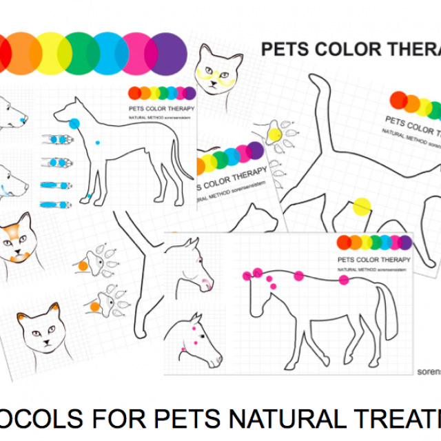 Color Light and Reflex Therapy Protocols